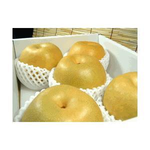 和歌山の梨 長寿品種 2kg(5玉)|bunza