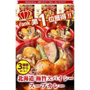 (送料無料)3種から選べる北海道.スープカレー...の詳細画像1