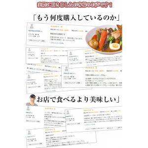 (送料無料)3種から選べる北海道.スープカレー...の詳細画像2