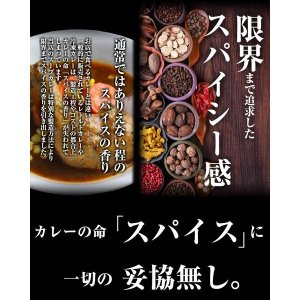 (送料無料)3種から選べる北海道.スープカレー...の詳細画像4