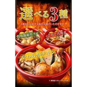 (送料無料)3種から選べる北海道.スープカレー...の詳細画像5