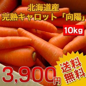 (送料無料)北海道産.完熟にんじん10kg.まとめ買いで大幅割引 にんじんジュース にんじんしりしり 野菜ジュースに 規格外 仕送り 国産人参 お取り寄せ 【E】|buono-buono