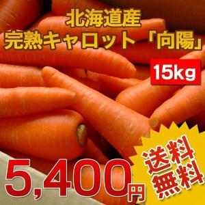 (送料無料)北海道産.完熟にんじん15kg.まとめ買いで大幅割引 にんじんジュース にんじんしりしり 野菜ジュースに 規格外 仕送り 国産人参 お取り寄せ 【E】|buono-buono