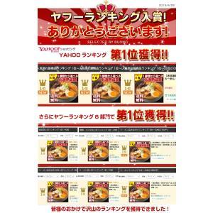 (送料無料 500円ポッキリ)5種から選べる....の詳細画像3