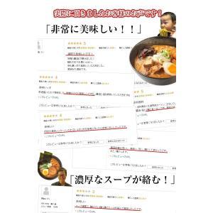(送料無料 500円ポッキリ)5種から選べる....の詳細画像4