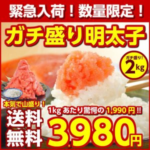 緊急入荷! (送料無料)北海道加工のガチ盛り!.辛子明太子2...