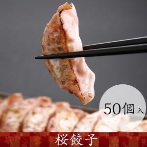 桜ぎょうざ おつまみ 本場熊本 馬肉 産地直送 50個入り|burning829