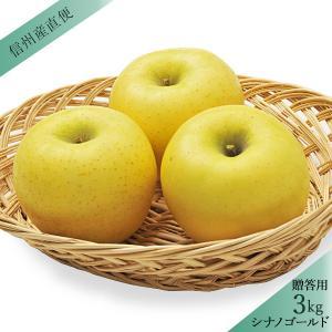 【信州産直便】りんご シナノゴールド 秀 贈答用3kg(7〜12玉) 送料込(沖縄別途590円)※10月中旬頃発送、産地直送のため前後する事があります|busan-nagano