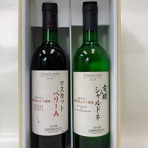 大和葡萄酒  マスカットベリーA・竜眼&シャルドネ ワイン2本セット 送料込 (沖縄別途590円)20歳未満の飲酒・販売は法律で禁止されています|busan-nagano