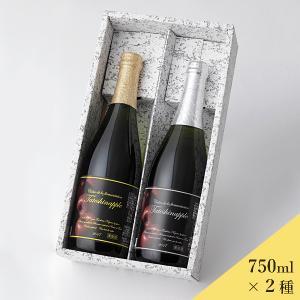 たてしなップルシードルスペシャリテ2本セット デミセック ブリュット 750ml×2 送料込 (沖縄別途590円 20歳未満の飲酒・販売は法律で禁止されています)|busan-nagano