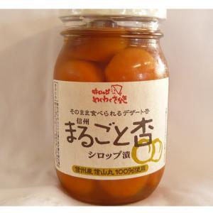 まるごと杏 約450g ×2|送料込|busan-nagano