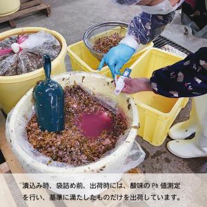 アースかいだ すんき 200g×3|送料込|busan-nagano|04