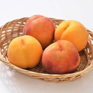 黄金桃(無袋) ご家庭用約2kg(5〜9玉) |送料込|busan-nagano