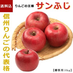 「信州フルーツ便」冬ギフト| サンふじ 10kg 【贈答用(32〜40玉)】 |送料込|信州産の旬のりんごを産地直送でお届けします。|busan-nagano