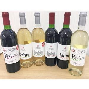 ドメーヌスリエ / お試しワイン(赤・白)6本セット 750ml×6 送料込(沖縄別途1,060円)20歳未満の飲酒・販売は法律で禁止されています busan-nagano