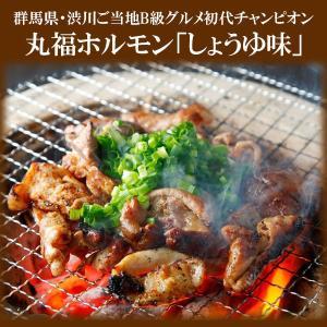 ホルモン焼き 丸福ホルモン「しょうゆ味」5袋セット 赤城のホルモン屋|bussan10