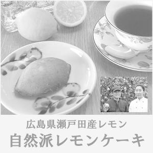 レモンケーキ 無添加 詰め合わせ ギフト 10個入り 化粧箱入り 広島|bussan10