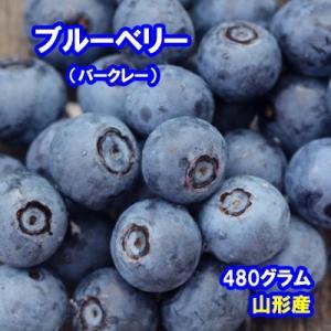 国産ブルーベリー バークレー 480グラム【山形産】|bussan10