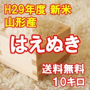はえぬき 10kg 平成29年 新米 産地直送 山形産|bussan10