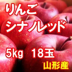 りんご シナノレッド 5kg 18玉 送料無料 国産 山形産 |bussan10