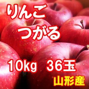 りんご つがる 10kg 36玉 送料無料 国産 山形産 |bussan10
