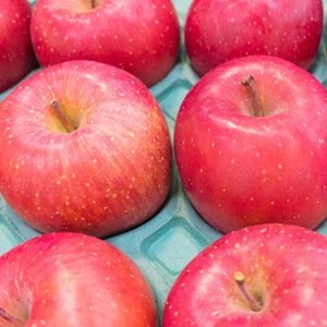 りんご ジョナゴールド 5kg 18玉 送料無料 国産 山形産  bussan10 02
