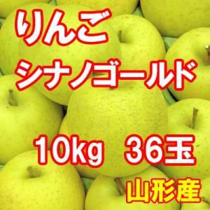 りんご シナノゴールド 10kg 36玉 送料無料 国産 山形産 |bussan10