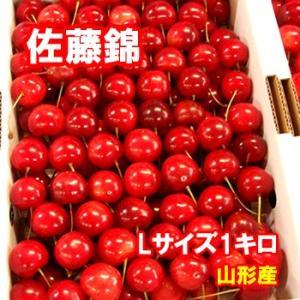 さくらんぼ 佐藤錦 Lサイズ 1キロ クール便発送 山形産|bussan10
