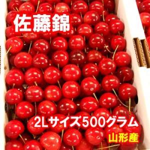 さくらんぼ 佐藤錦 2Lサイズ 500グラム クール便発送 山形産|bussan10