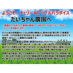 さくらんぼ 紅さやか 500グラム クール便発送 山形産|bussan10|04