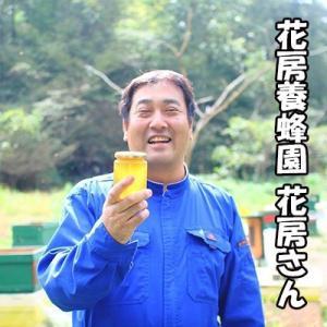 国産 はちみつ えごま蜂蜜 2000円ポッキリ|bussan10|02
