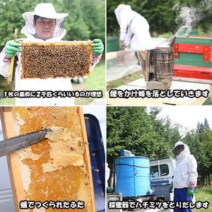 国産 はちみつ えごま蜂蜜 2000円ポッキリ|bussan10|03