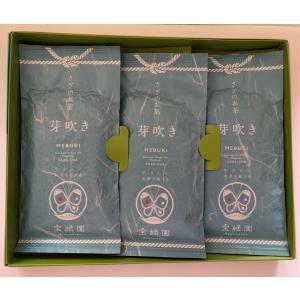 長崎県産 さざのお茶 芽吹き茶3本詰め ギフト|bussan10