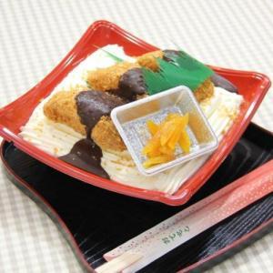 本物そっくりスイーツ!!上州名物ソースかつ丼のケーキ|bussan10