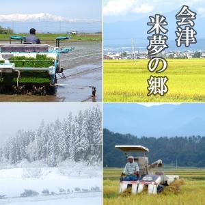 がんばる家族の11雑穀 500g 2個セット 国産 雑穀米|bussan10|03