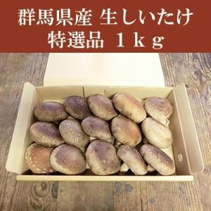 群馬県産 しいたけ(椎茸) 特選品 1kg 生しいたけ きのこ bussan10