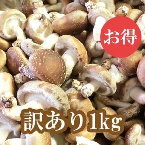 群馬県産 しいたけ(椎茸) 訳あり 1kg 生しいたけ きのこ bussan10