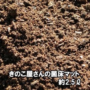 きのこ屋さんの菌床マット 昆虫マット 約2.5リットル 無農薬 家庭菜園|bussan10