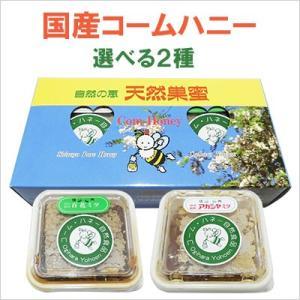3種から選べる国産コームハニー アカシア×百花×栗 2個セット 荻原養蜂園|bussan10