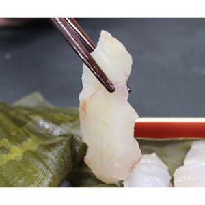 マダラ 真鱈 昆布締め刺身|bussan10