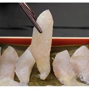 ウマヅラハギ 魚津寒ハギ 昆布締め刺身|bussan10