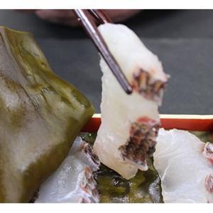 タイ 鯛 昆布締め刺身|bussan10