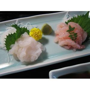 紅白えび お刺身ギフト2点セット(甘えび&白えび) bussan10 04