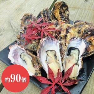 能登牡蠣 かき 殻付き 1斗缶 約100個 加熱用 専用ナイフ 片手用軍手付|bussan10