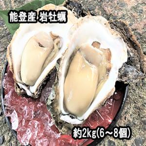 能登産 岩牡蠣 約2 kg(6〜8個)検査済 生食用 専用ナイフ 片手用軍手付|bussan10