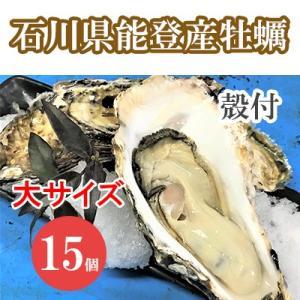 能登牡蠣 かき 殻付き 大サイズ 15個 200〜300g/1個 加熱用 専用ナイフ 片手用軍手付|bussan10