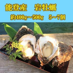 能登産 岩牡蠣 大サイズ 1個400〜500g 5〜7個 生食用 専用ナイフ 片手用軍手付|bussan10