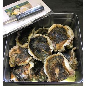 バーベキュー 岩牡蠣  20個(約3kg)加熱用 専用ナイフ 片手用軍手付 能登産 BBQ|bussan10