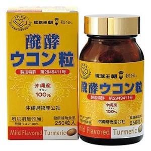 醗酵ウコン粒(250粒)2本セット|bussan10