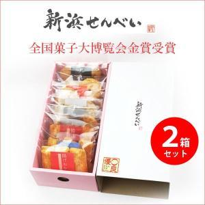 揚げおかき 手焼き煎餅 詰め合わせ 手土産に好評 新浜せんべいセレクトボックス 2箱セット